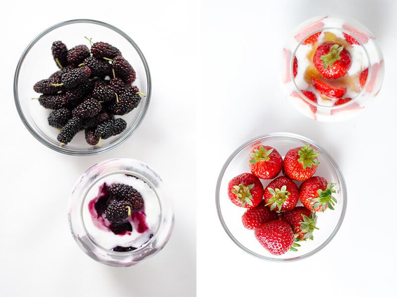 homemade yogurt | Omnivore's Cookbook