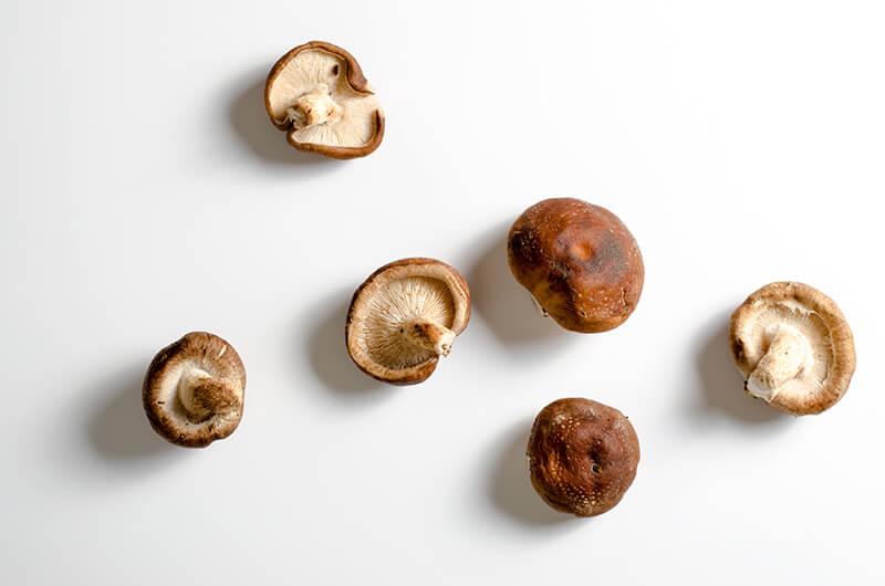 Shiitake mushroom | Omnivore's Cookbook