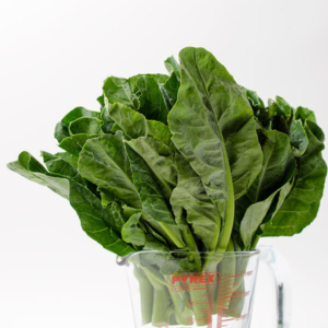 Chinese Broccoli | Omnivore's Cookbook