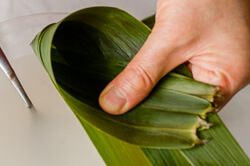 Zongzi with Red Bean Paste (Sticky Rice Dumplings) Cooking Process | omnivorescookbook.com