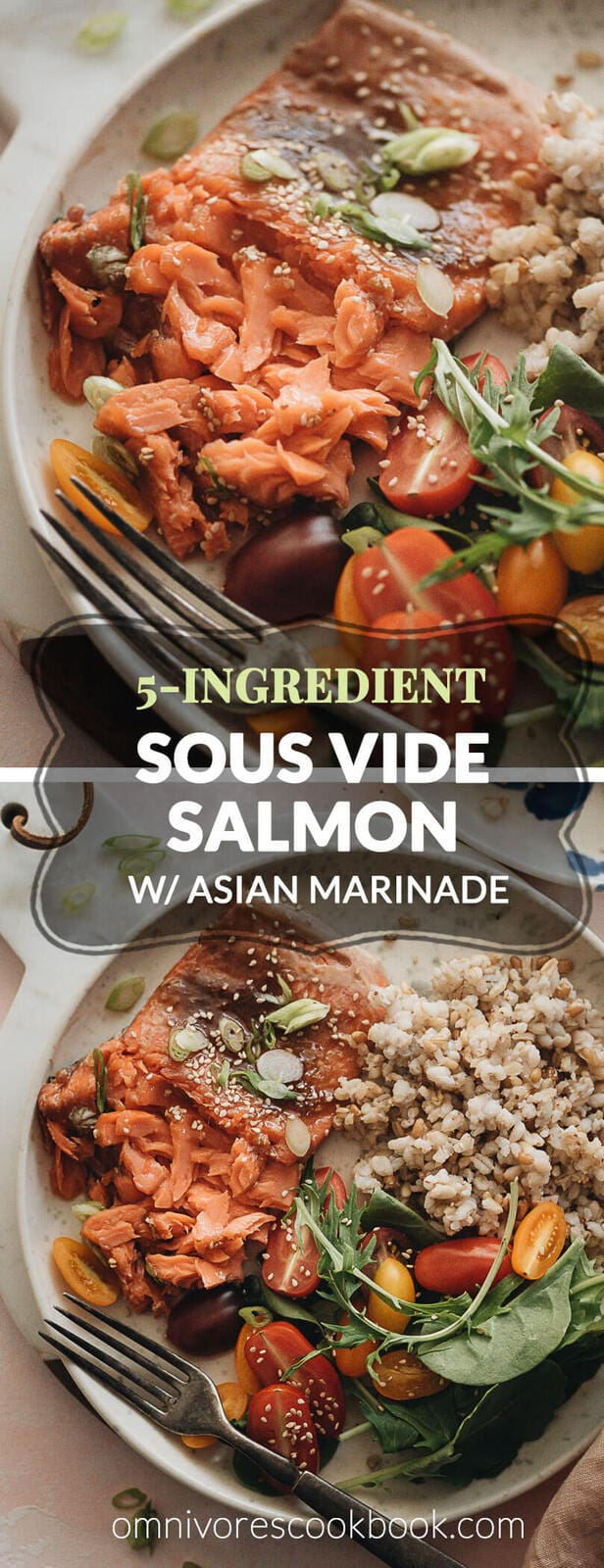 5-Ingredient Sous-Vide Salmon with Asian Sauce - cooking moist, tender, and flaky salmon in a rich Asian sauce without marinating. #ad #FoodSaverSousVide #simple #fillet #recipes #healthy