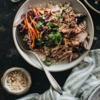 Asian Instant Pot pulled pork served on steamed brown rice and coleslaw