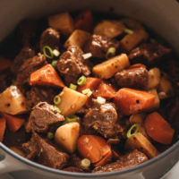 Chinese beef stew close up