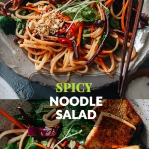 Crunchy, spicy and slightly sweet, my spicy rice noodle salad makes a versatile and delightful meal any time! You only need to mix one sauce, to use both as the marinade and the noodle sauce. Even better, the marinade works with all kinds of protein: chicken, shrimp, tofu, you name it! {Gluten-Free, Vegetarian/Vegan-Adaptable}