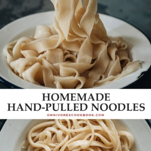 These freshly made hand-pulled noodles are springy and meaty, with a chewy mouthfeel that you'll never get from dried noodles. Learn all the secrets of hand-pulled noodles so you can easily make them at home without fail! {Vegan}